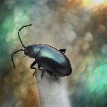 ©NS Beetle Black IA by OmarHernandez