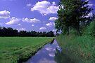 Summer Sky by Jo Nijenhuis