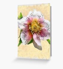 Watercolor Helleborus Greeting Card