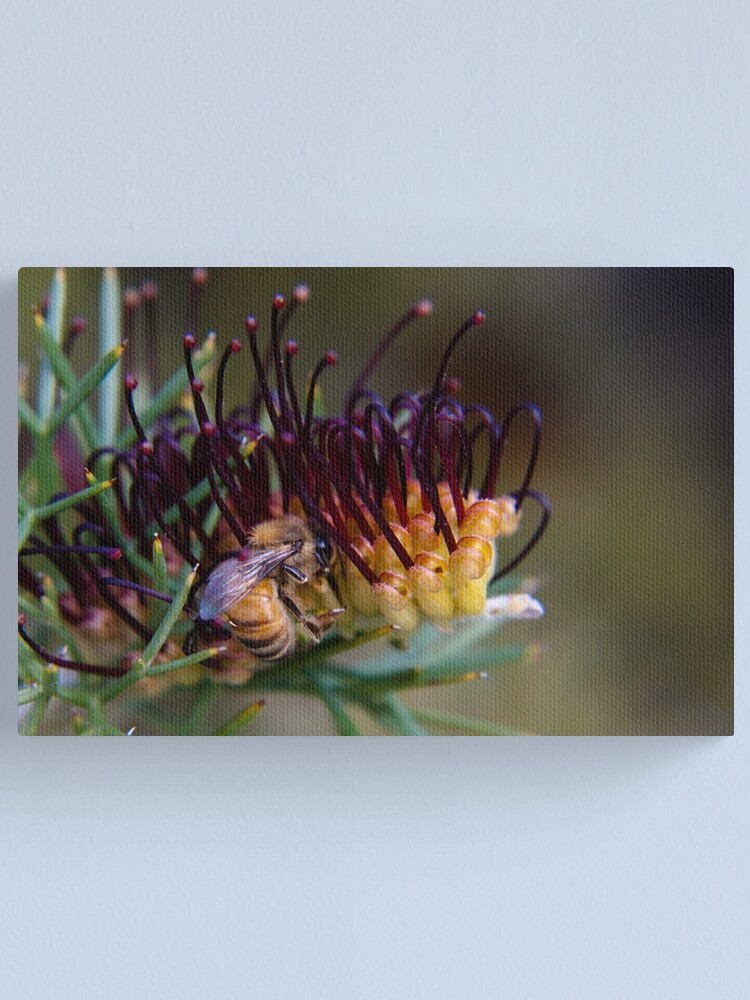 Alternate view of Bee on prikly toothbrushes Canvas Print