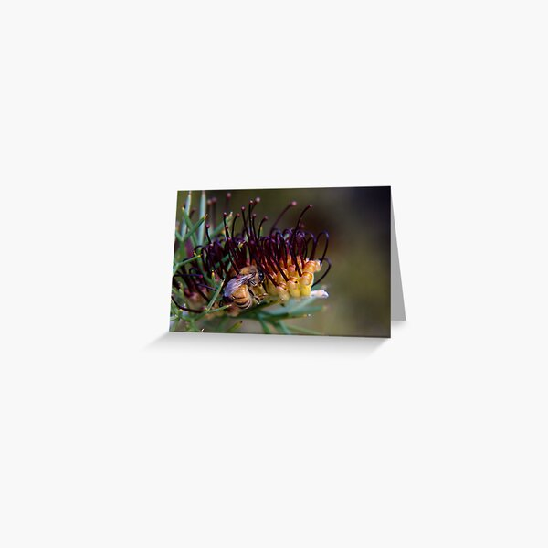 Bee on prikly toothbrushes Greeting Card