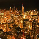 Chicago Night Scape by Gary Horner