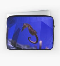 Seahorse Laptoptasche