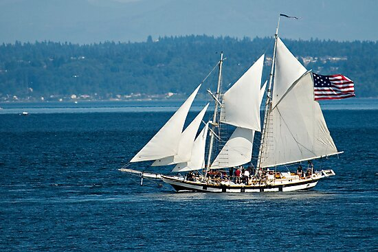 Sails Set & Full by Bryan Peterson