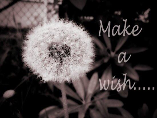 Make a wish.... by DDLeach