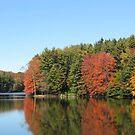 Clear Lake by artwhiz47