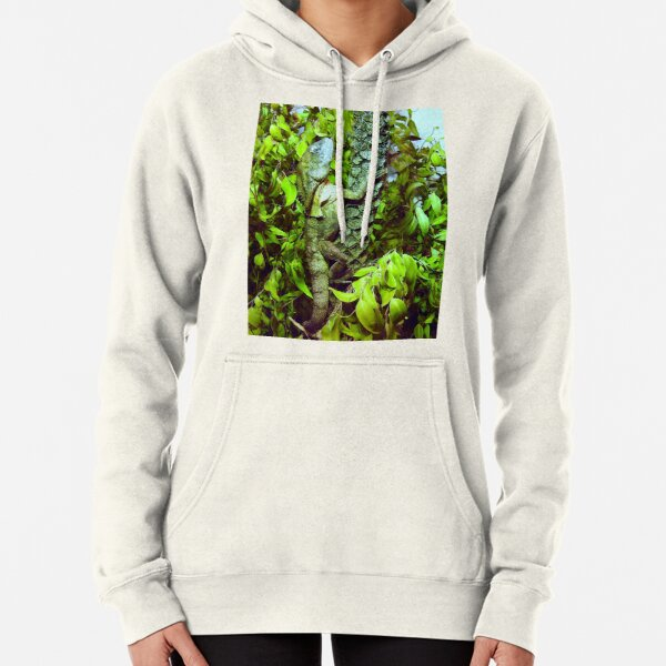 Frilled-necked lizard Pullover Hoodie