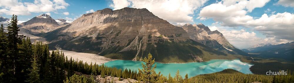 Peyto Lake, Banff National Park by chwells
