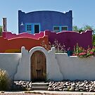 Tucson's Most Colorful by Linda Gregory