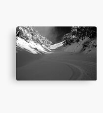 First Tracks Canvas Print