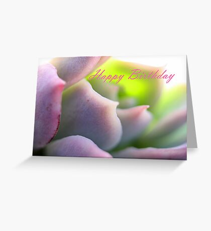 Happy Birthday - Soft Mauve Greeting Card Greeting Card