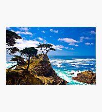 Monterey Lone Cypress Photographic Print