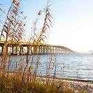 By the Bridge by Jonicool