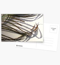 Featherflow Postcards