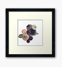 Maine Blueberries Framed Print