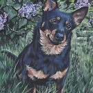 Lancashire Heeler beautiful Fine Art Dog Painting by lashepard