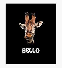 Funny giraffe Photographic Print