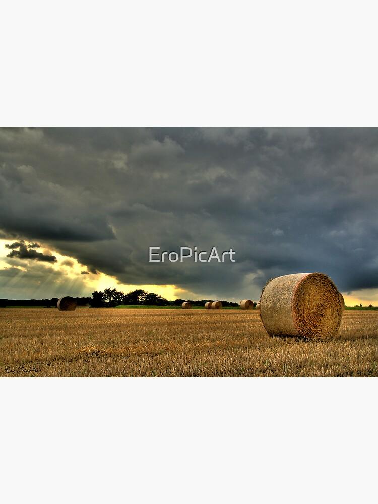 Kornfeld by EroPicArt