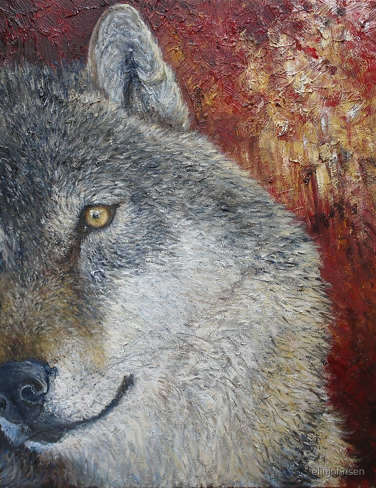 Wolf (Canis lupus) by elinjohnsen