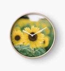 Bee on Sunflower Clock