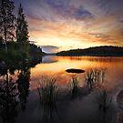 Sunset at Saimaa by Päivi  Valkonen