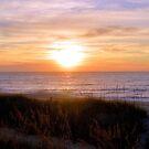 Sunrise On The Seagrass by ©Dawne M. Dunton