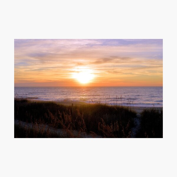 Sunrise On The Seagrass Photographic Print
