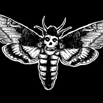 Skull Moth by ZugArt
