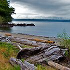 Clallam Bay by Nancy Richard