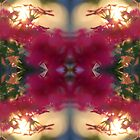 Nature Kaleidoscope 36 by Rachael Martin
