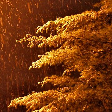 """""""A Snowy Evening in Knoxville (no.8, from this series)""""... prints and products  by ArtbyBob"""