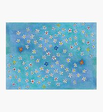 Daisies in your garden, pattern with aqua blue background Photographic Print