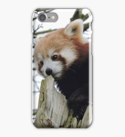 We Rise By Lifting Others iPhone Case/Skin