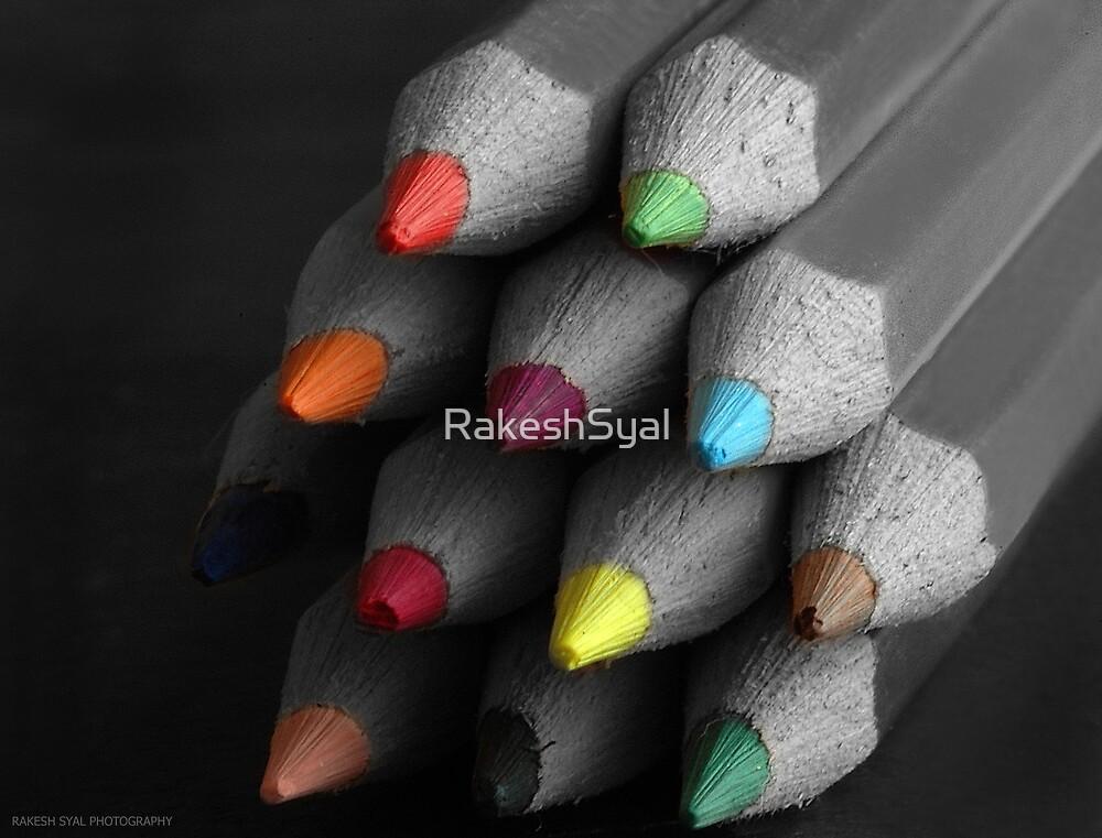 UNITY IN DIVERSITY by RakeshSyal