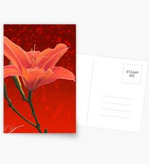Receptive Postcards