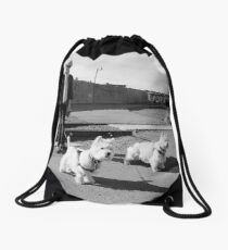 Woman with Two Dogs Drawstring Bag