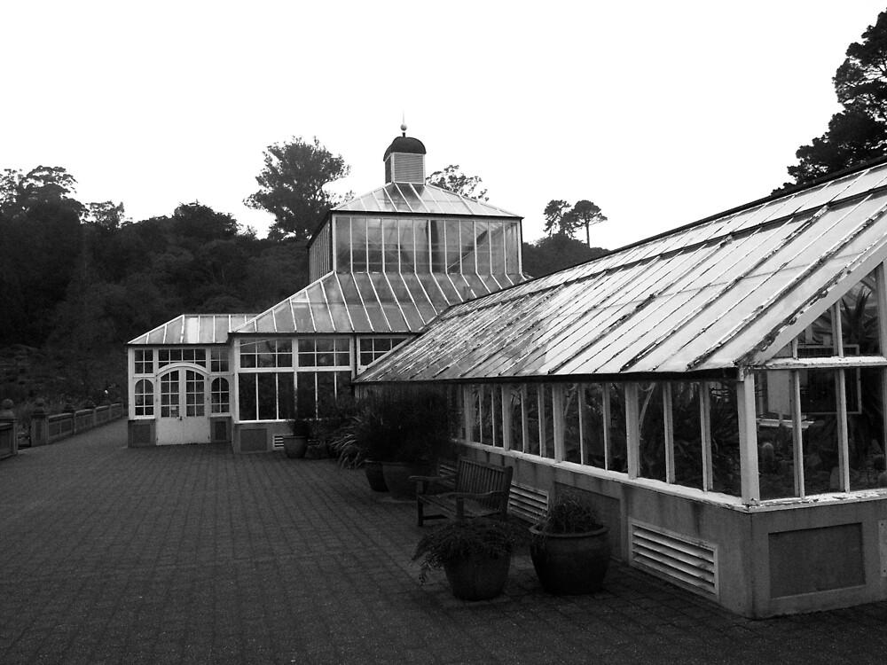 Conservatory, Dunedin Botanic Garden, New Zealand by Douglas E.  Welch