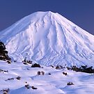 Mount Ngaruhoe, Tongariro National Park, New Zealand by Paul Mercer