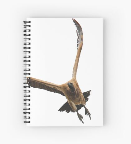 Cape (Griffon) Vulture - Gyps coprotheres Spiral Notebook