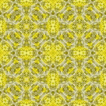 Ornament, ethnic, geometric 13 by fuzzyfox