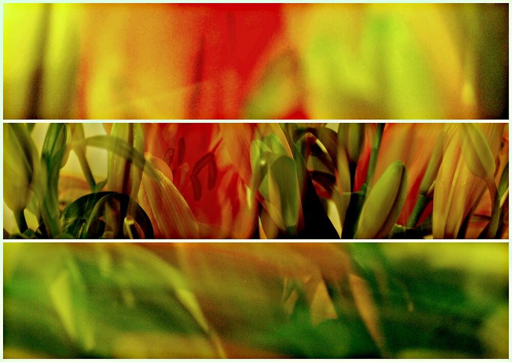 Sweeping Tigers by K.D. Hemi
