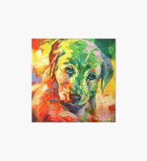 Labrador Puppy Art Board
