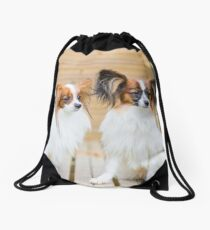 Outdoor portrait of a papillon purebreed dogs Drawstring Bag