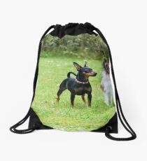 Outdoor portrait of a miniature pinscher and papillon purebreed dogs on the grass Drawstring Bag