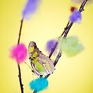 Tropical butterfly sitting on the colored bush over yellow background by anytka