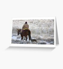 Sheep Herding, Red Desert, Wyoming Greeting Card