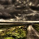 In Comming Storm by Stephen Peters