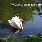 He leads me beside quiet waters... by Lynn Moore