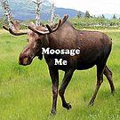 Moosage me by FranWest