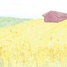 Rapeseed Fields  by Gina Lorubbio